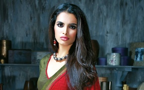 Картинка украшения, брюнетка, woman, индианка, Bollywood, сари, indian brunette
