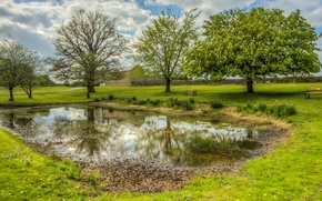 Картинка Англия, Природа, Трава, Весна, Деревья, Пруд, Bishop Auckland