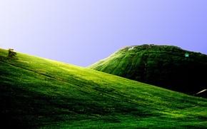 Обои зелень, горы, холмы, поля