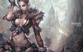 Картинка девушка, полет, птицы, ущелье, боец, Guild Wars