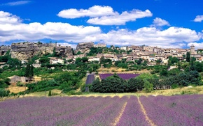 Картинка fields, hill, lavender, town