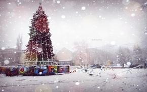 Картинка Зима, Новый Год, Ёлка