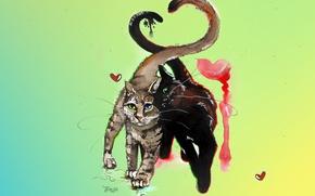 Обои кошка, усы, коты, сердце, любовь, парочка, цвет, рисунок, акварель, кошки, весна, кот