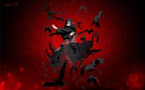 Картинка руки, плащ, красные глаза, akatsuki, sharingan, ninja, Itachi Uchiha, ниндзюцу, Naruto Shippuden, превращение, повязка на …