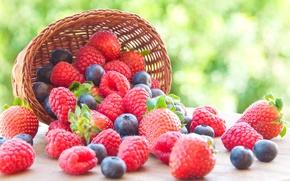 Обои ягоды, малина, черника, клубника, корзинка, fresh, strawberry, blueberry, berries, raspberry