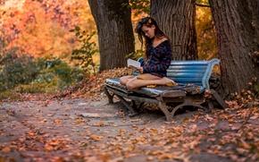 Картинка осень, девушка, парк, книга, скамья