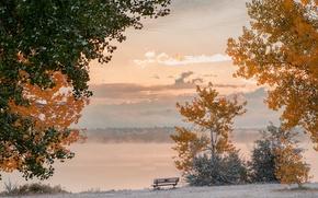 Картинка иней, осень, небо, облака, снег, деревья, скамья