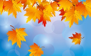 Картинка вектор, природа, небо, осень, листья
