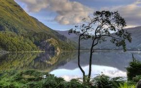 Картинка горы, озеро, отражение, дерево, Англия, England, Уэльс, Wales, Snowdonia, Snowdonia National Park, Сноудония, Gwynant Lake, ...