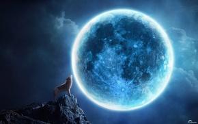 Картинка ночь, скала, коллаж, луна, волк, вой