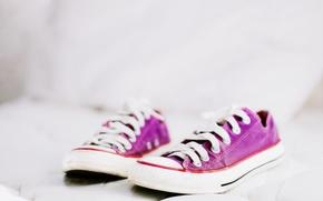 Картинка цвет, обувь, кеды, шнурки, конверсы