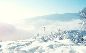 Картинка снег, деревья, горы, туман, Природа, Зима, сугробы, погода, Условия