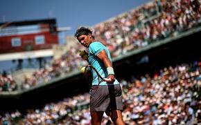 Картинка Рафаэль Надаль, первая ракетка мира, Rafael Nadal Parera, испанский теннисист