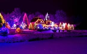 Обои зима, снег, ночь, природа, город, огни, новый год, рождество