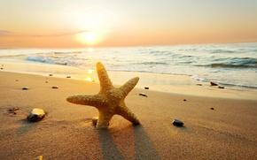 Обои море, пляж, лето, небо, облака, закат, природа, beach, sea, ocean, sunset, sun, sand, starfish