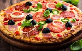 Обои помидоры, тесто, блюдо, пицца, сыр, ветчина, маслины, салями, лук