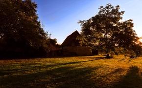Картинка осень, трава, листья, деревья, пейзаж, природа, дом, день
