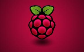 Обои компьютер, малина, цвет, ягода, листик, Raspberry Pi