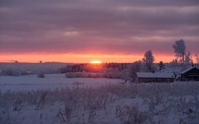 Картинка winter, snow, morning, sunrise