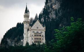 Картинка деревья, горы, замок, окна, башни