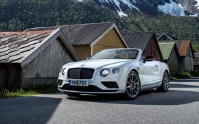 Обои Bentley, 2015, кабриолет, Convertible, Continental, бентли, континенталь