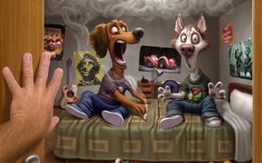 Обои комната, дым, хозяин, собаки