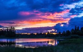 Картинка природа, деревья, озеро, вода, лес, облака, небо, трава, пейзаж