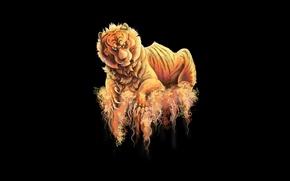 Картинка тигр, темный фон, хищник, tiger