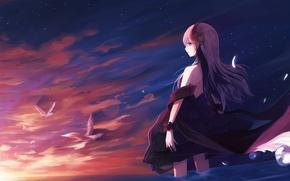 Обои небо, девушка, солнце, облака, закат, птицы, аниме, арт