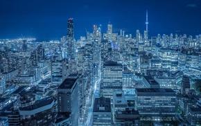Картинка здания, Канада, панорама, Торонто, Canada, ночной город, небоскрёбы, Toronto