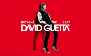 Обои David Guetta, Nothing But the Beat, Давид Гетта, Электро, Музыка