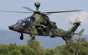 Картинка полёт, вертолёт, ударный, Tiger A38