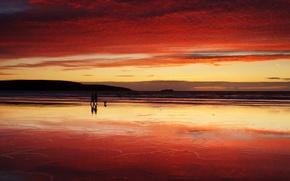 Обои море, прогулка, закат