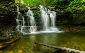 Обои лес, лето, природа, ручей, камни