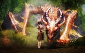 Картинка девушка, дракон, меч, фэнтези
