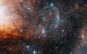 Картинка звёзды, black hole, туманность тюльпан, микроквазар, чёрная дыра, agujero negro, лебедь x-1, созвездие лебедь