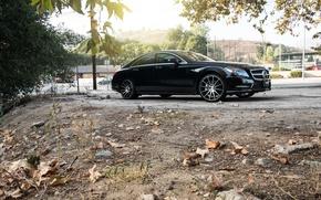 Картинка черный, black, Mercedes Benz, диски, мерседес, CLS550, side