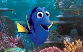 Картинка colorful, cinema, Pixar, ocean, eyes, movie, animal, fish, film, tropical, reef, corals, tropical fish, Nemo, …