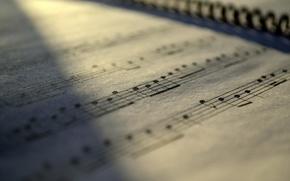 Картинка макро, ноты, музыка