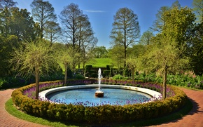 Картинка солнечно, цветы, парк, деревья, Longwood, Kennett Square, фонтан, США