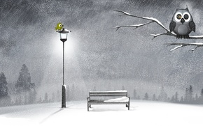 Обои зима, снег, ночь, дерево, сова, лавочка, фонарь, птичка