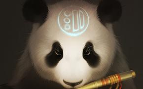 Картинка взгляд, медведь, арт, панда, флейта