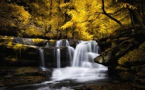 Картинка осень, листья, деревья, ручей, водопад, рок