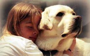 Картинка настроение, собака, девочка, друзья
