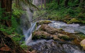 Картинка лес, мост, река, камни, водопад, поток