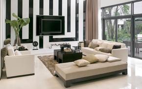 Обои стиль, полосы, комната, диван, растение, телевизор, окно