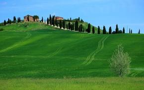 Картинка небо, трава, деревья, холмы, дома, Италия, Тоскана