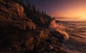 Картинка волны, лес, закат, океан, Скалы