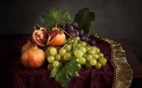 Обои бахрома, натюрморт, фрукты, виноград, гранат