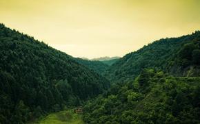 Картинка лес, деревья, природа, холмы, домик